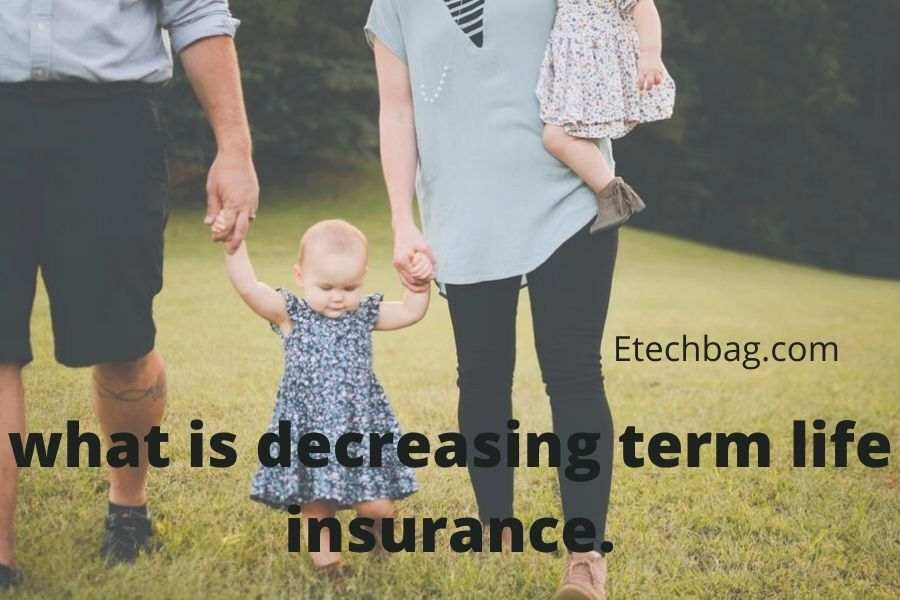 what is decreasing term life insurance